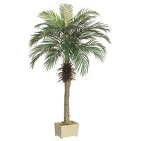 Set of 2 Potted Artificial Silk Phoenix Palm Trees 5' - Green