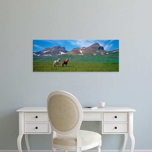 Easy Art Prints Panoramic Images's 'Horses Standing And Grazing In A Meadow, Borgarfjordur, Iceland' Canvas Art