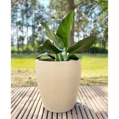 Floridis Amsterdan X-Large Planter Bowl - 21.65 inches high x 21.65 inch diameter
