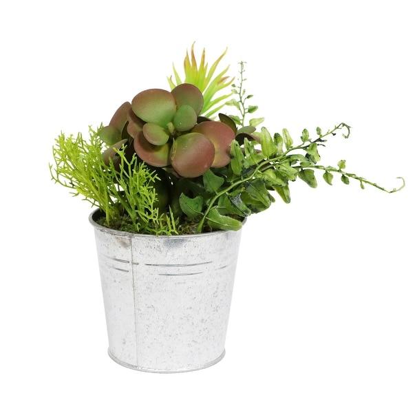 """8"""" Artificial Succulents in Metal Pot Plant - N/A"""