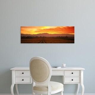 Easy Art Prints Panoramic Images's 'Sunset, Napa Valley, California, USA' Premium Canvas Art