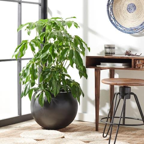 "Safavieh Outdoor Kenslia Black Planter - 19.6"" W x 19.6"" L x 15.7"" H"