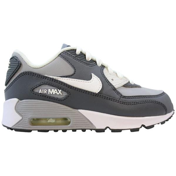 Shop Nike Air Max 90 LTR Wolf GreyWhite Cool Grey 724822