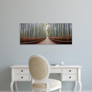 Easy Art Prints Panoramic Images's 'Bamboo trees in a forest, Arashiyama, Kyoto Prefecture, Japan' Premium Canvas Art