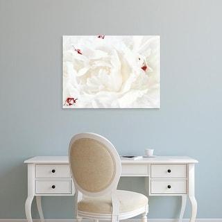Easy Art Prints Rachel Perry's 'White Linen Peony I' Premium Canvas Art