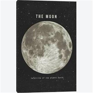 8 x 10 in. The Moon Canvas Wall Decor by Terry Fan, Black
