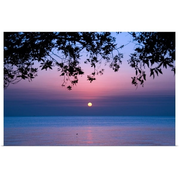 """Tree branches and sunrise over sea."" Poster Print"