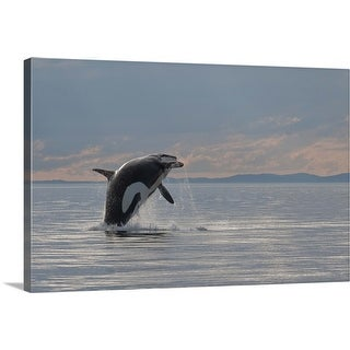 """""""Orca jumping out of water"""" Canvas Wall Art"""