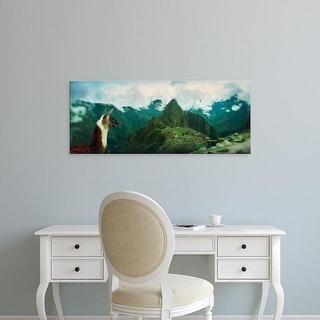Easy Art Prints Panoramic Image 'Alpacas, archaeological site, IncRuins, Machu Picchu, Cusco Region, Peru' Canvas Art
