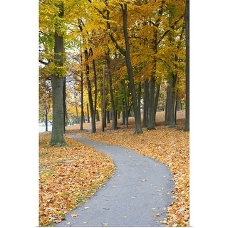"""Path Through Autumn Color Trees"" Poster Print"
