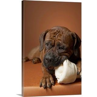 """Dog with rubber bone"" Canvas Wall Art"