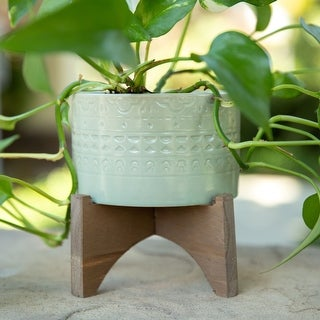 """Link to Mid-Century 5"""" Mayan Ceramic Planter on Wood Stand,Matte Sage Similar Items in Planters, Hangers & Stands"""