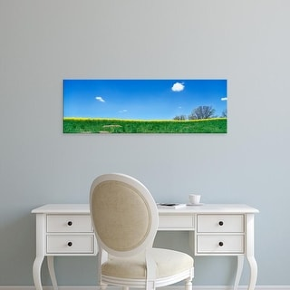 Easy Art Prints Panoramic Images's 'Mustard field and blue sky, DeWitt County, Illinois, USA' Premium Canvas Art