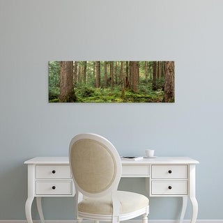 Easy Art Prints Panoramic Images's 'Trees in a forest, Cheakamus Lake, British Columbia, Canada' Premium Canvas Art