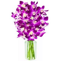 KaBloom: The Ultimate Purple Orchid Bouquet of 10 Exotic Purple Dendrobium Orchids from Thailand with Vase