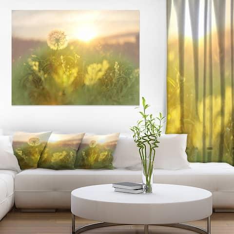Dandelion Blooming Flower in Field - Floral Artwork Print on Canvas