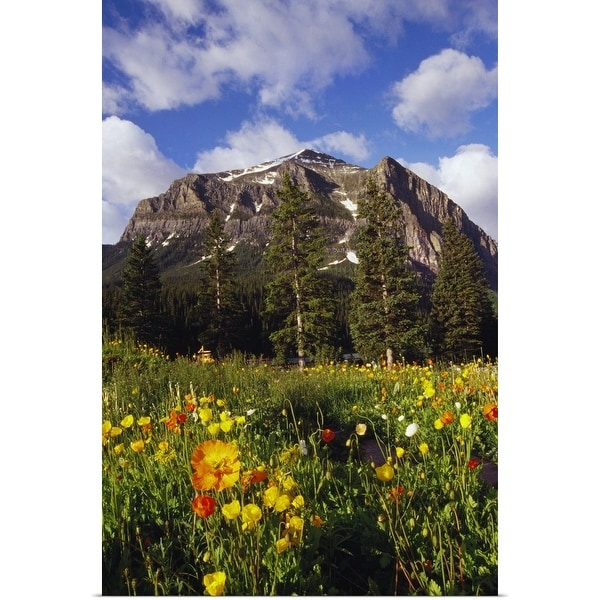 """""""Poppies and wildflowers blooming in front of mountain peak, Alberta, Canada."""" Poster Print"""
