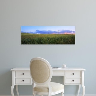 Easy Art Prints Panoramic Images's 'Grass in a field at sunset, Wyoming, USA' Premium Canvas Art