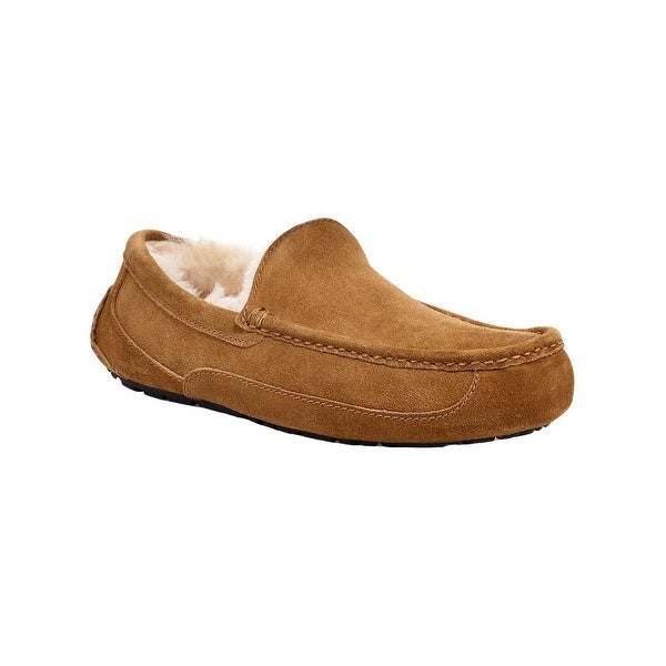 409ccb73abd Shop Ugg Mens Ascot Suede Closed Toe Slip On Slippers - Free ...