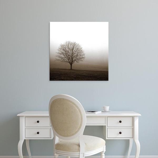 Easy Art Prints PhotoINC Studio's 'Tree in Mist 1' Premium Canvas Art