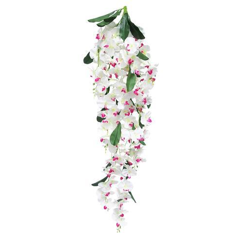 "Phalaenopsis Orchid Flower Stems Hanging Bush Spray Bouquet Vine 52in - 52"" L x 11"" W x 7"" DP"