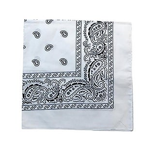 Set of 240 Mechaly Unisex Paisley 100% Polyester Double Sided Bandanas - Bulk Wholesale