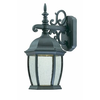 Thomas Lighting TW0002763 Covington LED Outdoor Wall Lantern Bronze Finish - painted bronze