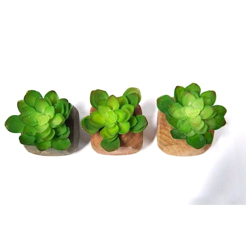 3 Piece Small Artificial Faux Greenery for House Decorations
