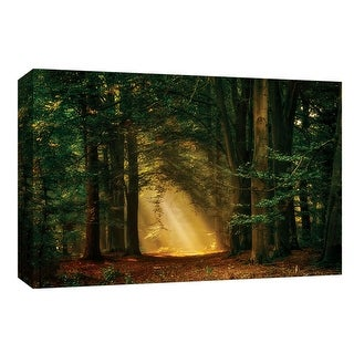 "PTM Images 9-148253  PTM Canvas Collection 8"" x 10"" - ""Shine On"" Giclee Forests Art Print on Canvas"