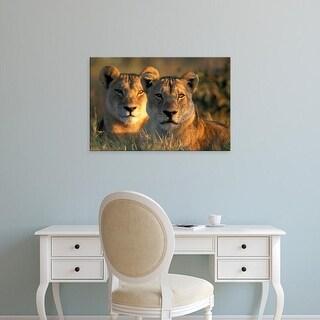 Easy Art Prints Paul Souders's 'Chobe National Park Lionesses' Premium Canvas Art