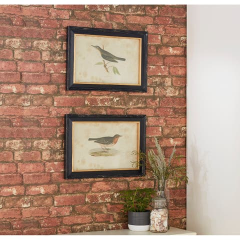 "Vintage Style Bird Illustrations in Black Frames Set of 2 19.5"" x 13.5"" - 20 x 1 x 14"
