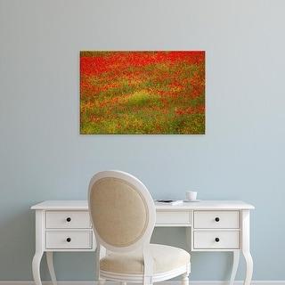 Easy Art Prints Terry Eggers's 'Poppy Fields In Full Bloom' Premium Canvas Art