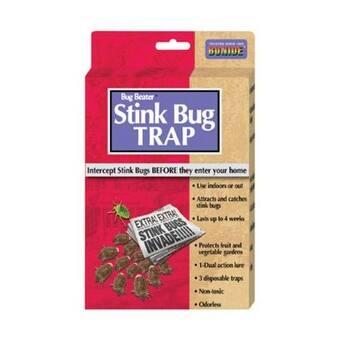Bonide 198 Stink Bug Trap, 3/Pack