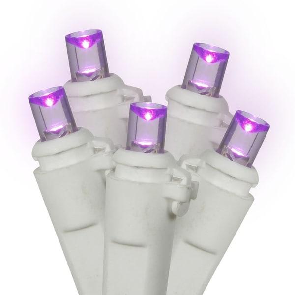 """100Lt LED Purple/WW WideAngle EC 4""""x34'L"""