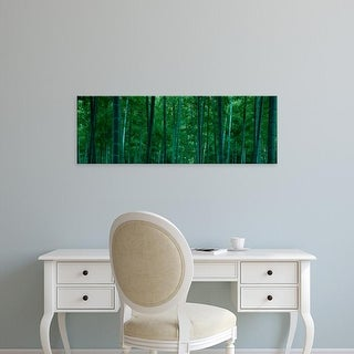 Easy Art Prints Panoramic Images's 'Bamboo trees in a forest, Nagaokakyo, Kyoto Prefecture, Japan' Premium Canvas Art