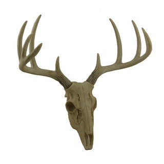 Little Bucky Wall Mounted Faux Aged Finish 10 Point Antlers Deer Skull 15 Inch - 15.5 X 14.5 X 9.75 inches