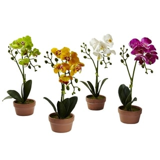 Nearly Natural Phalaenopsis Orchid with Clay Vase Arrangement - Set of 4