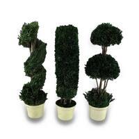 Decorative 3 Piece Tabletop Topiary Set 14 in. - Multicolored