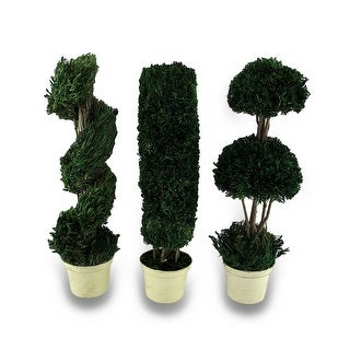 Decorative 3 Piece Tabletop Topiary Set 14 in. - Multicolored