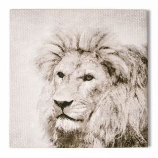 """Graham and Brown 41-829 20 Inch x 20 Inch """"Roar"""" Art Print on Stretched Canvas - N/A"""