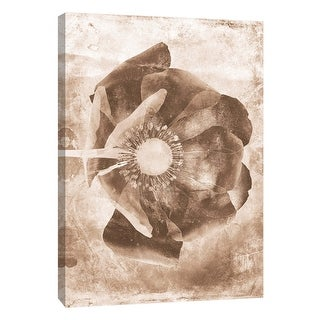 "PTM Images 9-105797  PTM Canvas Collection 10"" x 8"" - ""Sepia Flower Inversions 6"" Giclee Flowers Art Print on Canvas"