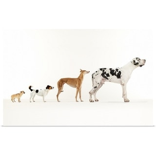 """""""Ascent of Dog"""" Poster Print"""