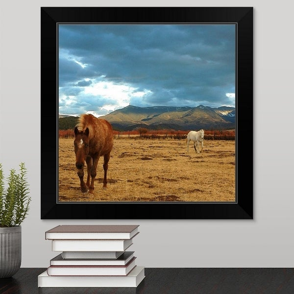 """Brown horse and white horse in dry winter meadow in Truchas, New Mexico."" Black Framed Print"