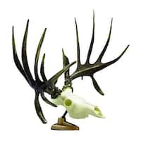 Raxx Big Rack Whitetail Deer Skull Antlers Trophy Mount Base Dashboard Shedz