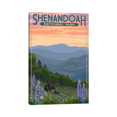 "iCanvas ""Shenandoah National Park (Black Bear Family)"" by Lantern Press Canvas Print"