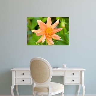 Easy Art Prints Paul Thompson's 'Orange Dahlia' Premium Canvas Art