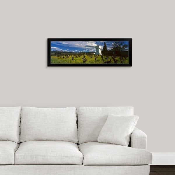 """Barn in a mustard field near St. Helena Napa Valley Napa County California"" Black Framed Print"