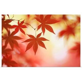 """Japan, maple"" Poster Print"