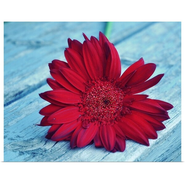 """""""Red Daisy on wood."""" Poster Print"""