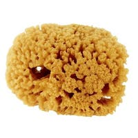 Purdy Corp. Small Sea Sponge 503192400 Unit: EACH